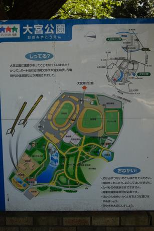 大宮公園.jpg